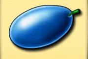 Pflaumen, Zitronen, Kirschen und Orangen