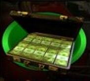 Der Geldkoffer