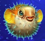 Der Kugelfisch