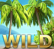 Tropical Wild