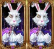Der weiße Hase – Scatter