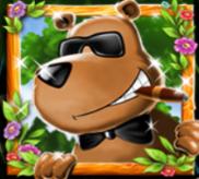 Broker Bear Wild