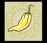 Gelbe Chilischote