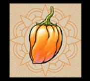 Orange Chilischote