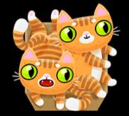 Zwei orange Katzen