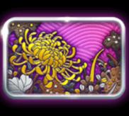 Dschungel-Blumen