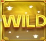 Multifly Wild